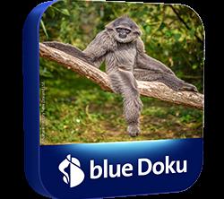 blue_TV_Packshot_Doku_RGB_DE_250x250